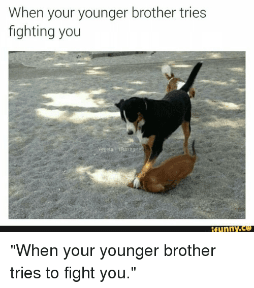 Exclusive Funny Quotes About Siblings Fighting