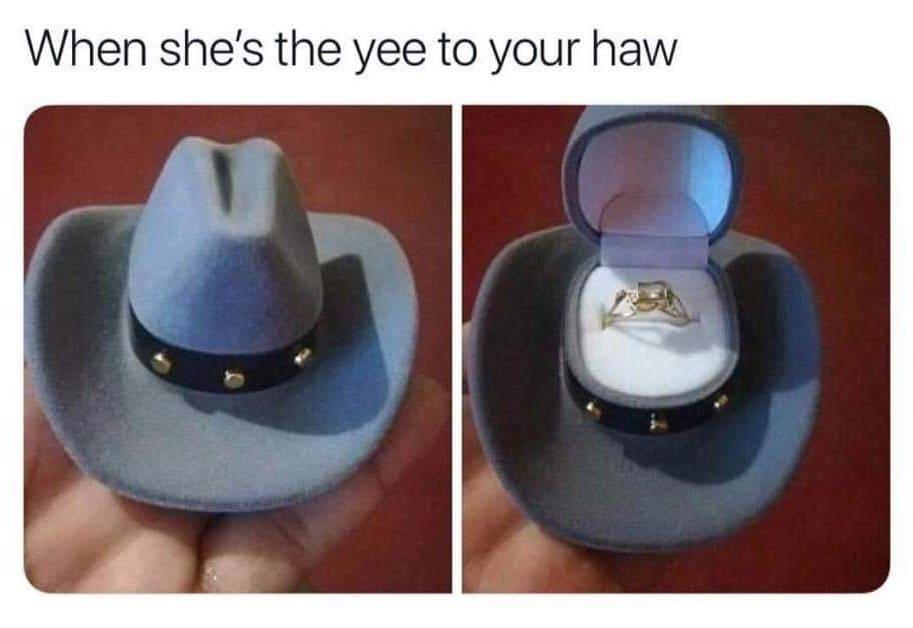 where yeehaw meme