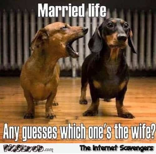 wife married life memes