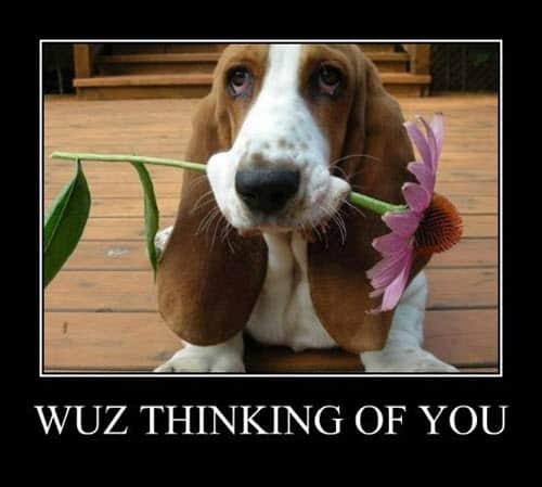 wuz thinking of you meme