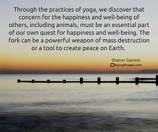 yoga quotes on life