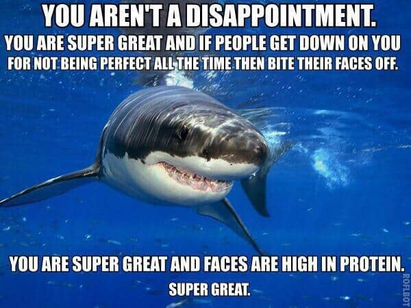 you arent a disappoinment encouragement meme 15 encouragement memes that will surely uplift your day