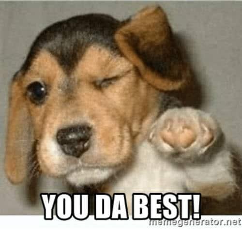 you da best beagle meme