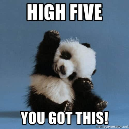 you got this high five meme