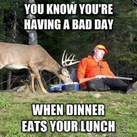 The 20 Best Deer Hunting Memes (So Far) | SayingImages.com