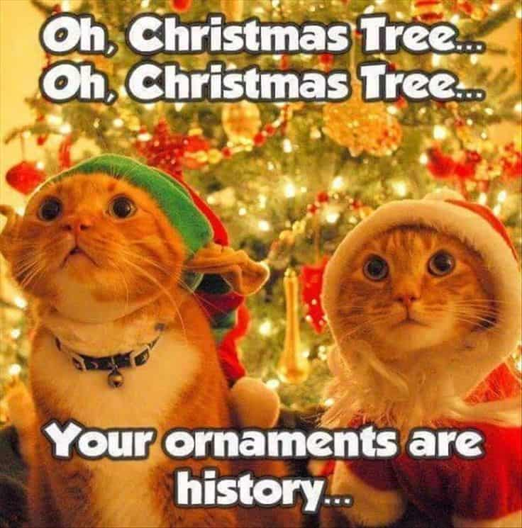 https://sayingimages.com/wp-content/uploads/your-ornaments-christmas-song-memes.jpg