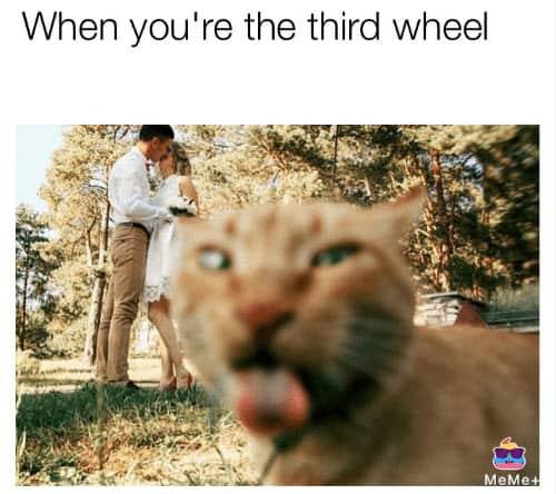 youre the third wheel meme