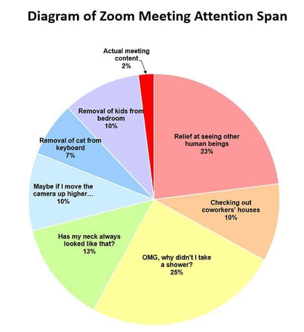zoom meetings attention span memes