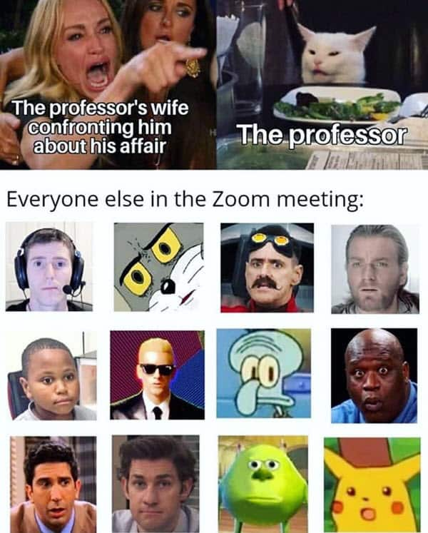 zoom meetings professor memes