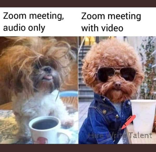 zoom meetings with and video memes