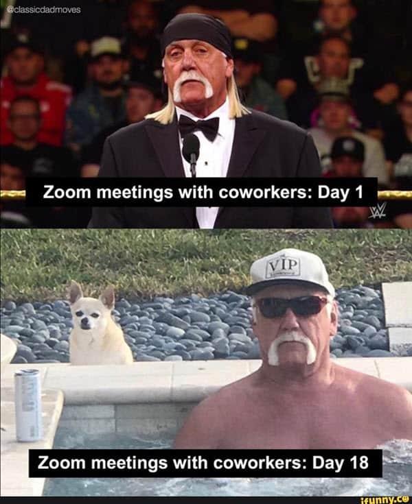 zoom meetings with coworkers memes